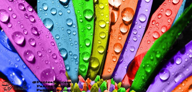 روانشناسی رنگها - میر محمد مجد