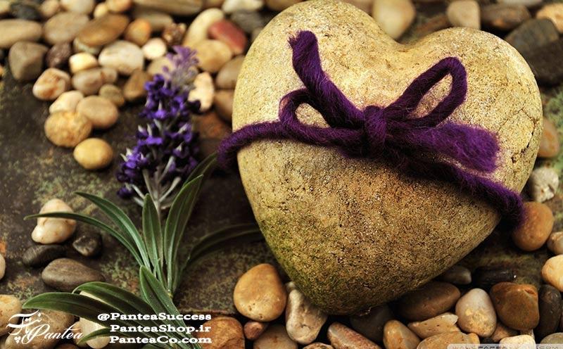 عشق ورزیدن - دکتر میرمحمد مجد