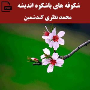 شکوفه های باشکوه اندیشه - محمد نظری گندشمین