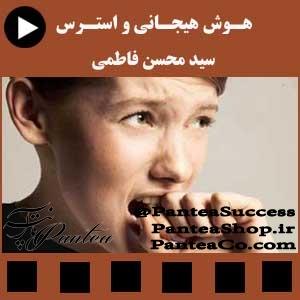 هوش هیجانی و استرس - سید محسن فاطمی