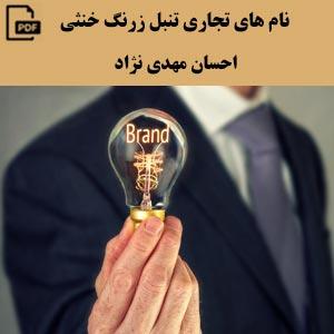 نام های تجاری تنبل زرنگ خنثی - احسان مهدی نژاد